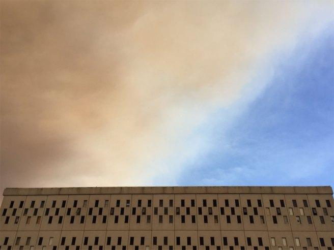 Bray_AnneM_smoke-OTIS